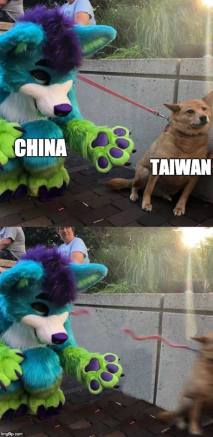 Furry China