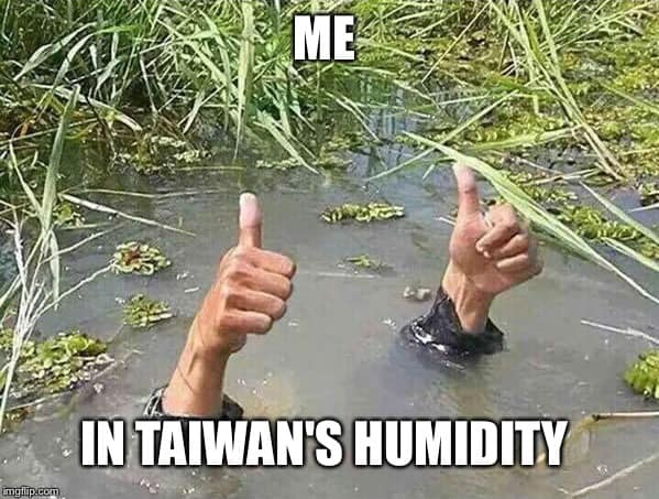 Me in Taiwan's humidity